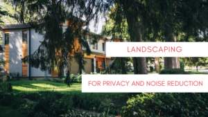 Landscaping For Privacy and Noise Reduction
